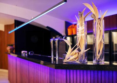 The room lier: ruime bar met alle faciliteiten